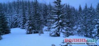 Карпати порадував сніг – уже майже метер навалило