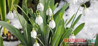 2 березня: яке сьогодні свято?