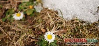 25 березня: яке сьогодні свято?