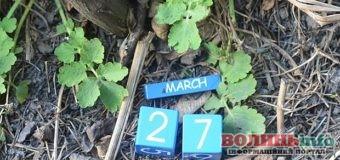 27 березня: яке сьогодні свято?