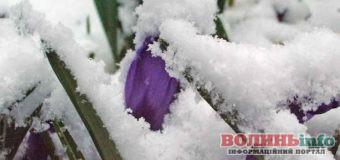 Прогноз погоди на 23 березня: зимно, вітряно і сніжитиме