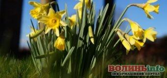 4 квітня: яке сьогодні свято?