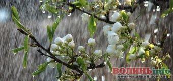 Погода на 30 квітня: чи дочекаються волиняни дощу?