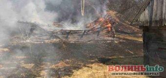 Пожежа у національному парку «Синевир»: через спалювання трави ледь не згорів лі