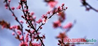 13 квітня: яке сьогодні свято?