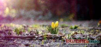 3 квітня: яке сьогодні свято?