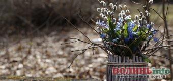 12 квітня: яке сьогодні свято?