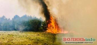 За добу на Волині рятувальники ліквідували 25 пожеж