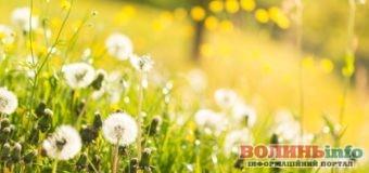 30 квітня: яке сьогодні свято?