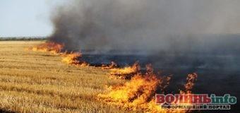 Відповідальність за спалювання сухої рослинності посилили