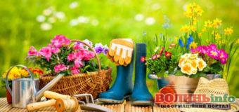 Посівний календар на травень 2020: що і коли саджати