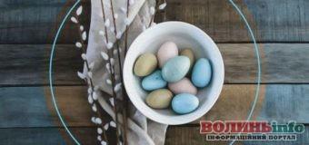 Готуємося до Великодня: які вони, яйця робін та як їх мати у себе вдома