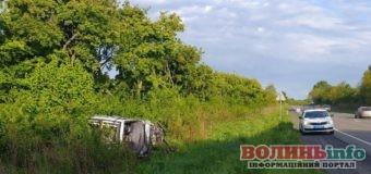 Смертельна ДТП: Renault Scenic злетів у кювет, водій загинув