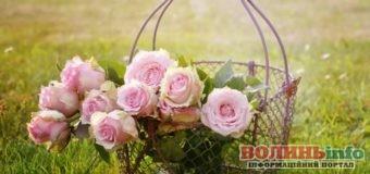 16 травня: чим особливий цей день та що святкують в Україні та світі
