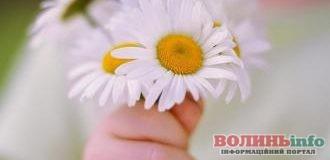 10 травня: чим особливий цей день та що святкують в Україні та світі