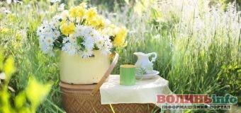 1 травня: чим особливий цей день та що святкують в Україні та світі