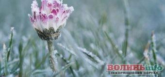Травневе похолодання в Україні: синоптики попереджають про дощіімокрий сніг