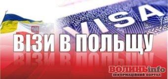 Консульські установи Польщі в Україні відновлюють видачу віз