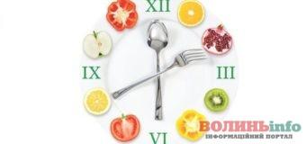 5 основних правил харчування в літню спеку