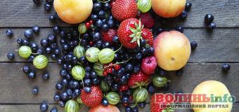 Як правильно їсти ягоди в літню спеку