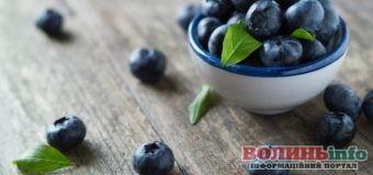 Чорниця: смачні варіації, як куштувати цю корисну чорну ягідку