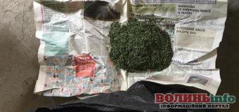 """Мак, конопля, канабіс, таблетки: на Волині у поліції """"плідний улов"""" наркотичних речовин"""