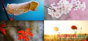 Якою буде погода в україні взимку та восени  – прогноз синоптиків
