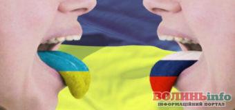Другу державну мову для України вибрали у РНБО