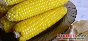 Як правильно варити кукурудзу, щоб зберегти смак