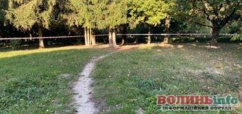 Згвалтування у луцькому парку: злочинець зізнався і знаходиться під вартою
