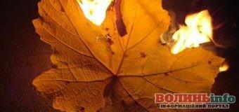 Осінь – сезон диму: чому не можна спалювати листя і траву