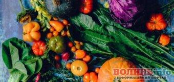 Календар садівника-городника: жовтень 2020