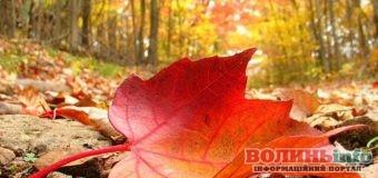 3 жовтня: чим особливий цей день та що святкують в Україні та світі