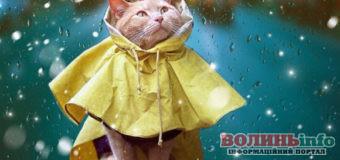 Лучан попереджають про погіршення погодних умов