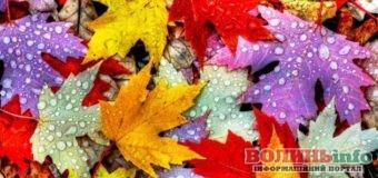 27 жовтня: чим особливий цей день та що святкують в Україні та світі