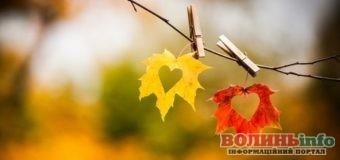 8 жовтня: чим особливий цей день та що святкують в Україні та світі