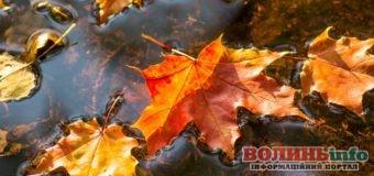16 жовтня: чим особливий цей день та що святкують в Україні та світі