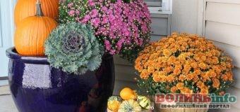 21 жовтня: чим особливий цей день та що святкують в Україні та світі