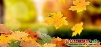 5 листопада: чим особливий цей день та що святкують в Україні та світі