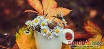 2 листопада: чим особливий цей день та що святкують в Україні та світі