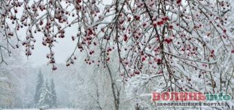 30 листопада: чим особливий цей день та що святкують в Україні та світі
