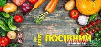 Посівний календар 2021 – помічник для всіх, хто займається городництвом та садівництвом