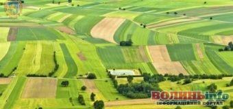 Чому важливе управління земельними ресурсами: обговорювали у Рожищенській громаді