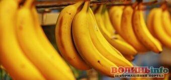 Банани під загрозою повного зникнення