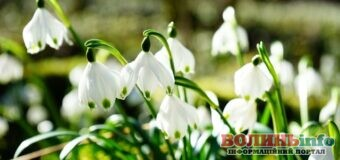 3 квітня – кого сьогодні вітати з Днем ангела та чим особливий цей день?