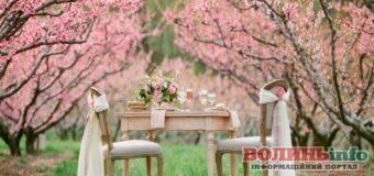 Весільний календар: сприятливі та несприятливі дати для одруження у травні 2021 року