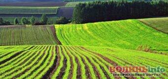 Мораторій на ринок землі скасовують – які документи потрібні для продажу?