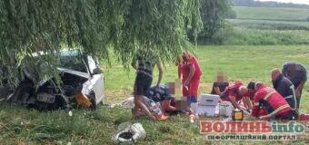 Смертельна ДТП у Луцькому районі: з 12 пасажирів авто не вижило 3