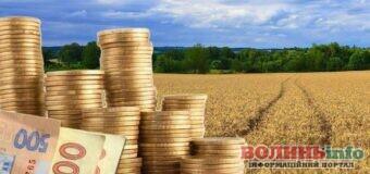 Волиняни значно активніше декларують доходи від продажу сільськогосподарської продукції