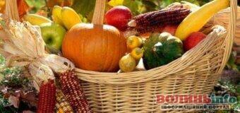 Місячний посівний календар садівника-городника: вересень